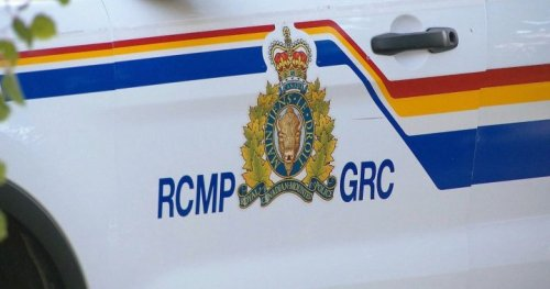 Body of man discovered in wooded area near Mayfield, N.B. - New Brunswick   Globalnews.ca