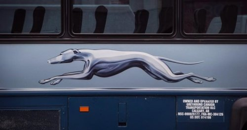 Greyhound Canada to cut all bus routes, end operations