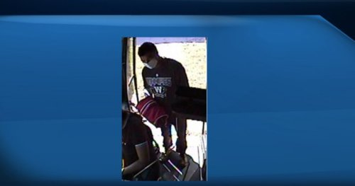 Robbery on Winnipeg Transit bus left young woman injured - Winnipeg | Globalnews.ca