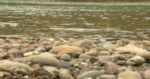 Woman dead after being swept into Oldman River