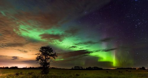 Meet the aurora borealis chasers in Alberta: 'It's like nothing else in the world'   Globalnews.ca