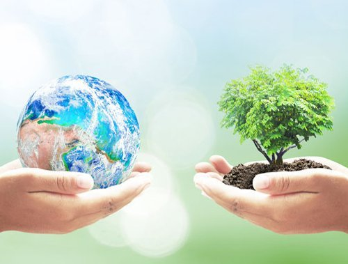 Earth Month: Tips for going green this April