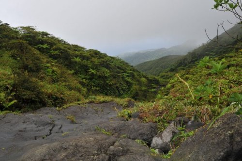 Heavy rains worsen the effects of St. Vincent and the Grenadines' La Soufrière volcano