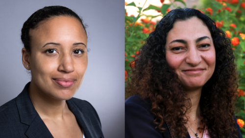Nani Jansen Reventlow and Rasha Abdulla join Global Voices board