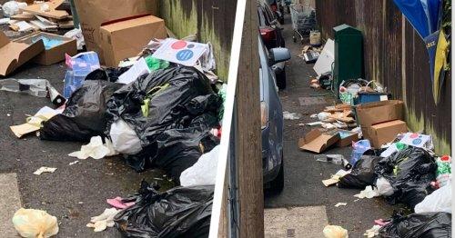 Trolleys and lawnmower dumped in man's litter filled street