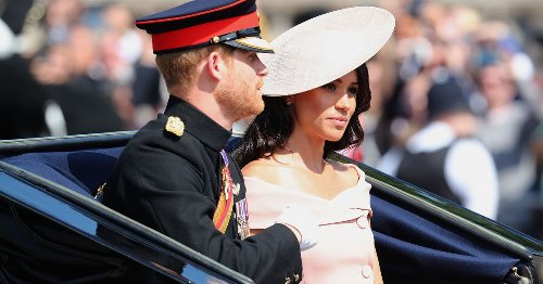 Meghan Markle and Prince Harry should 'give up their titles'