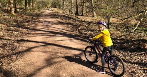 Family cycling trip review - only half of us fell off our bikes