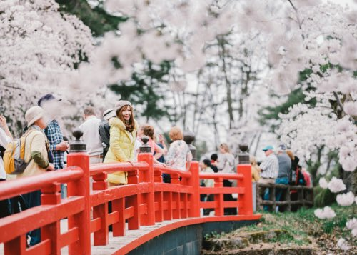 18 Travel Secrets of Aomori Japan: Guide for Sightseeing, Shopping, and More!