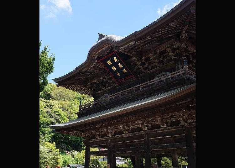 Japan Guide: Top 6 Most Popular Temples in Kamakura