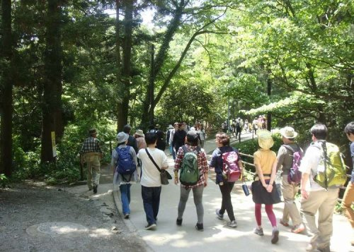 Mount Takao Ultimate Hiking Guide 2021: Climbing Courses From Beginner to Expert!