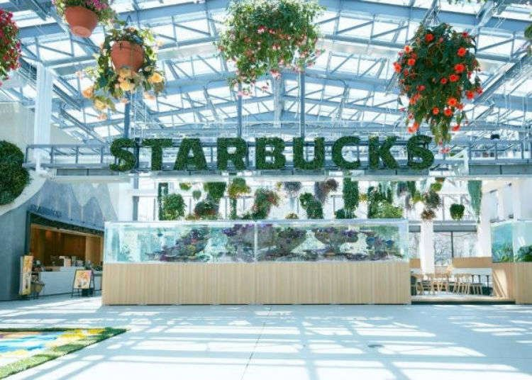 Japan's Newest Starbucks Opens Inside a Blooming Greenhouse (We Have Photos!)
