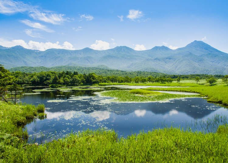 Exploring the Beauty of Hokkaido – An Interview With an International Nature Guide