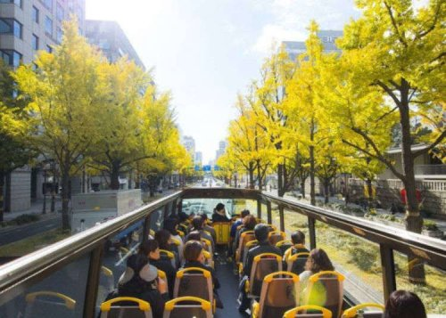 Perfect For Osaka Sightseeing! Two Popular Tour Buses in Osaka