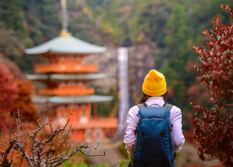 Top 13 Things to Do in Wakayama Japan, Treasure Trove of Nature and History