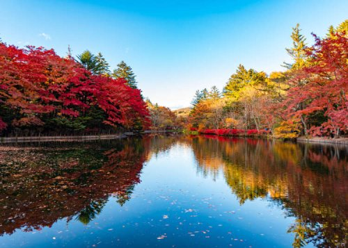 Day Trips From Tokyo: 7 Famous Tourist Spots to Enjoy History & Nature in Tokyo's Suburbs