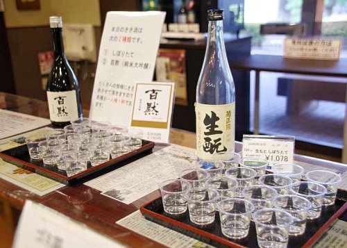 What is Sake Anyway?! Checking Out How 'The Best' Sake is Made at Kiku Masamune Sake Brewery