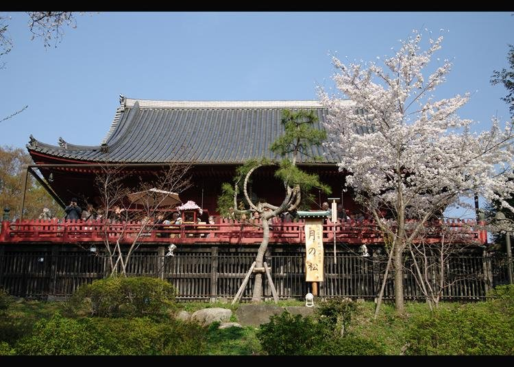 Tokyo Trip: Most Popular Temples in Tokyo and Surroundings