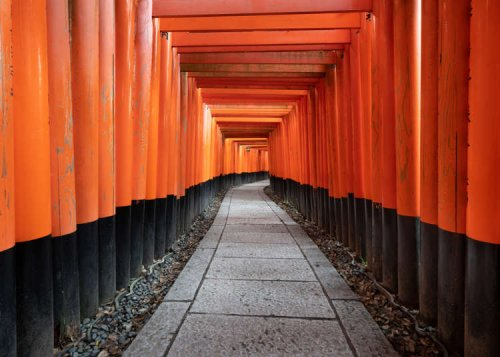 Fushimi Inari Taisha: Everything You Need to Know To Explore Kyoto's Famous Temple of Red Gates