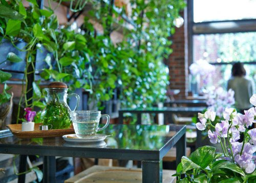 Tokyo Locals' Select: 6 Favorite Spots in Harajuku and Omotesando