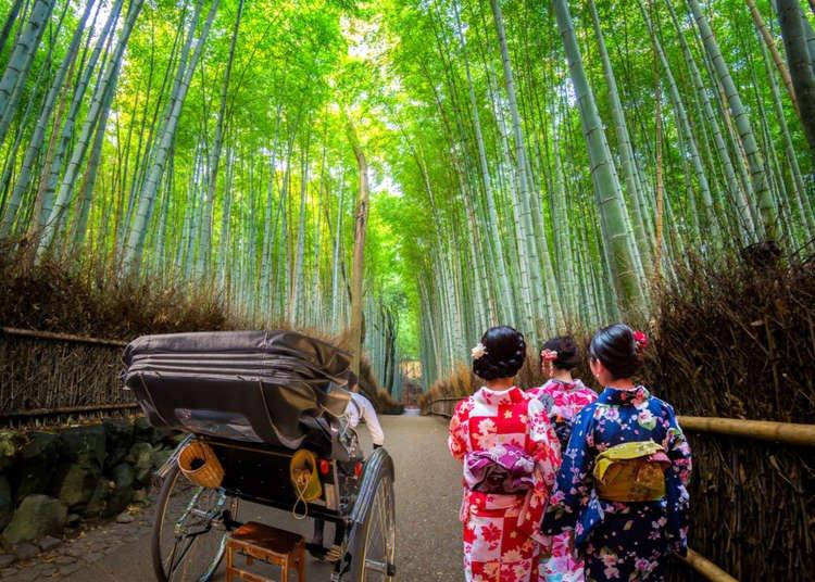 Arashiyama Bamboo Forest: A Complete Guide