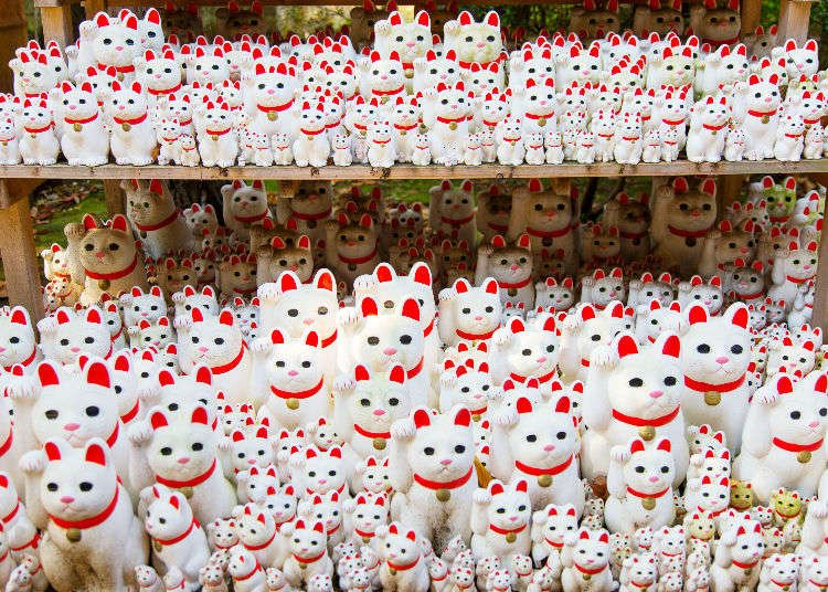 """Gotokuji Temple: Tokyo's """"Lucky Cat"""" Temple - A Must-Visit for Cat Lovers!"""