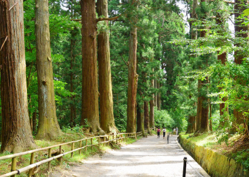 Hiraizumi Travel Guide: This Hidden Area of Japan Will Make You Believe in Fairy Tales