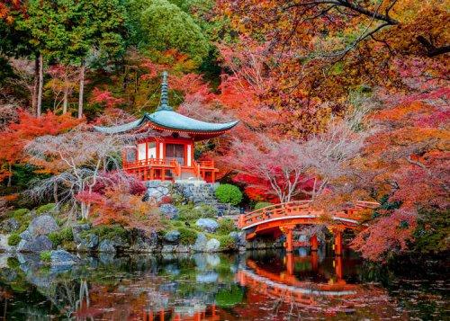 Brief Intro to Japanese Gardens