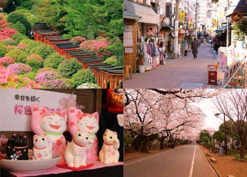 Exploring Old Tokyo's Neighborhoods: 11 Things To Do in Yanesen (Yanaka, Nezu, and Sendagi)!