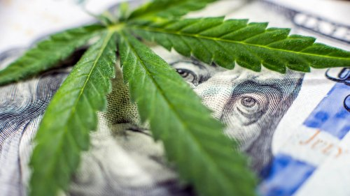 Weed Legalization Is Broadening, and One Company Is Getting Ready