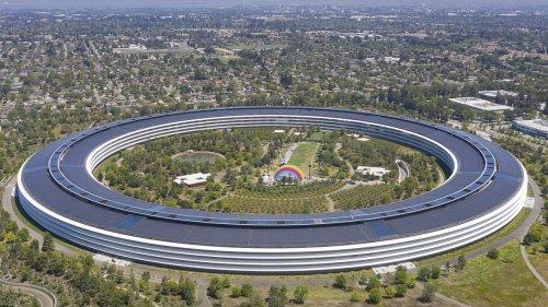 Apple mit 36 Prozent Umsatzwachstum