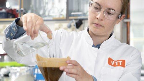 Erster Kaffee im Labor gezüchtet
