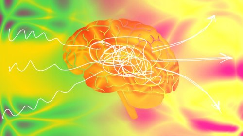 The brain-changing magic of new experiences