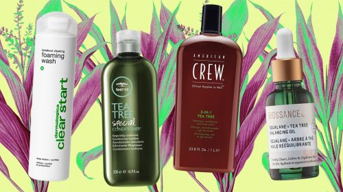 Our 15 Favorite Tea Tree Products, From Body Wash to Deodorant
