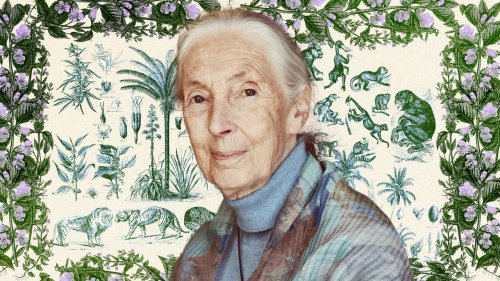 Jane Goodall on How to Change Minds and Why She Isn't Ruling Out Bigfoot