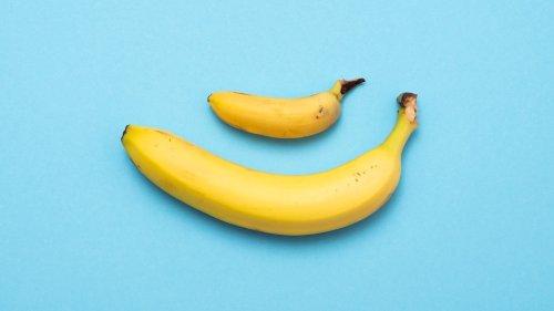 Voici la vraie taille moyenne du pénis selon une nouvelle étude