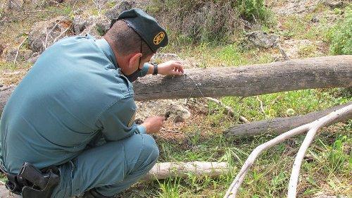 Dos investigados por el uso de artes de caza prohibidas en un coto de Granada