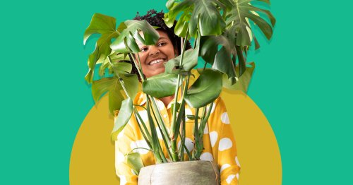 Feeling Lonely? Research Says Becoming a Plant Parent is an Idea Worth Watering