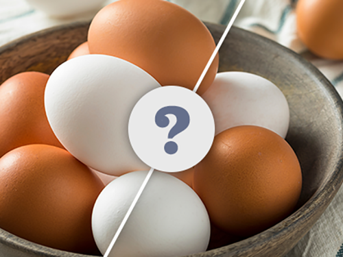 Brown Eggs and White Eggs: What Is the Difference?
