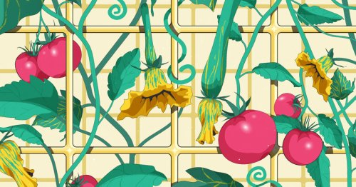 The Highs of Vertical Gardening and the Lowdown on Growing the Right Veggies