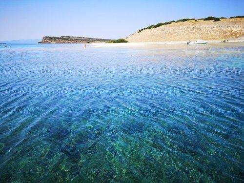 Mediterranean Turning into Tropical Sea, WWF Warns