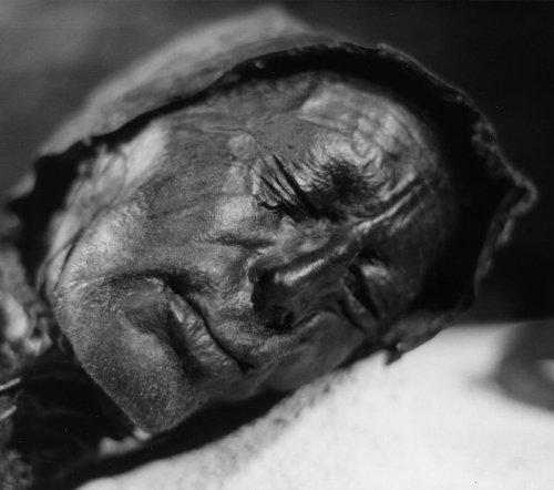 Tollund Man: Revealing the Last Meal of an Iron Age Mummy