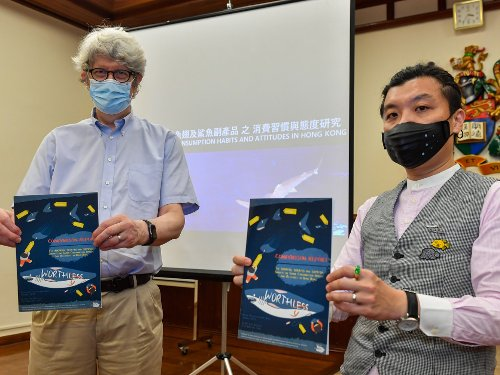 The World's Biggest Shark Fin Importer, Hong Kong Sees Demand Dip In Favor of Conservation