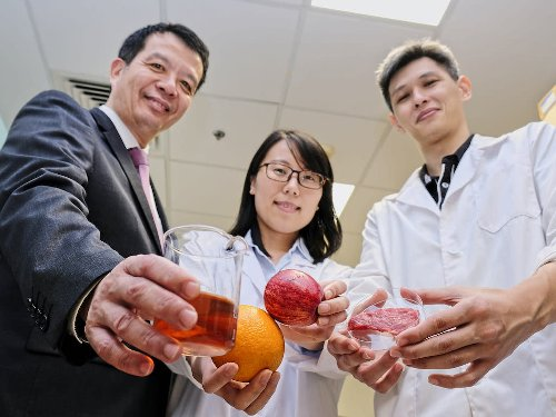 Singapore University To Offer Asia's First Alt Protein Course