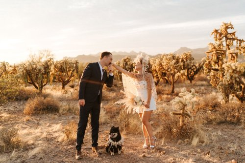 A Wedding Romper + A Pampas Flower Crown for this Elopement at Superstition Mountains
