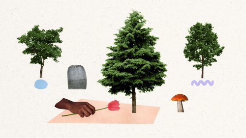 Green burial is a growing trend. Could it become the norm?