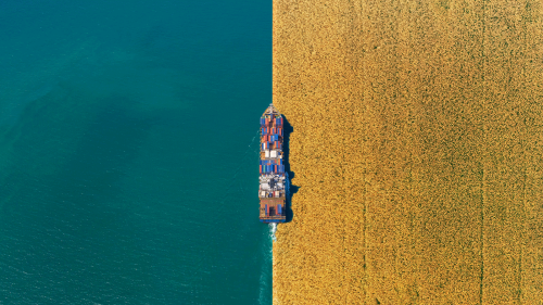 Can farm waste help clean up the world's dirty cargo ships?