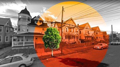 Why poor neighborhoods have fewer trees