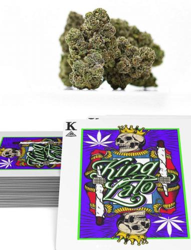 REVIEW: The Cure Company – Kinglato