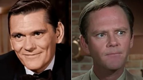 The Real Reason There Were Two Darrins On Bewitched