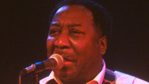 The Untold Truth Of Muddy Waters